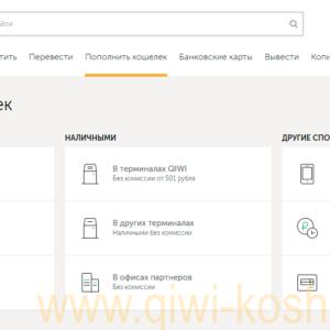 Что такое Qiwi кошелек: Подробное описание основных функций || Киви кошелек википедия